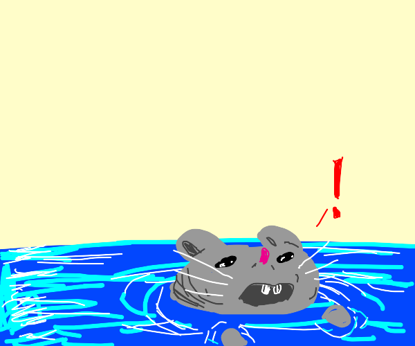 A mouse swimming