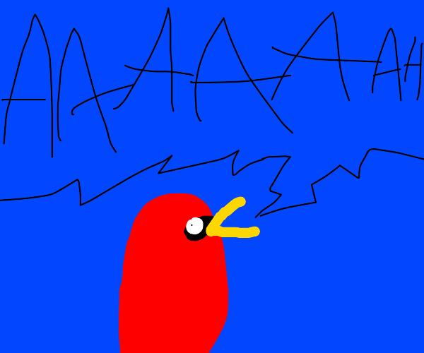 Bird Screams In Agony