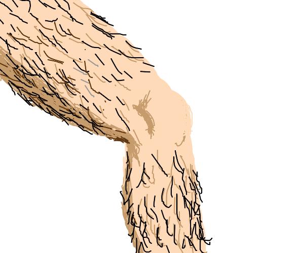 Hairy leg