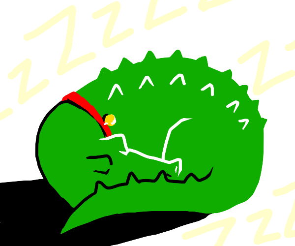 pet alligator sleeps while boy is away