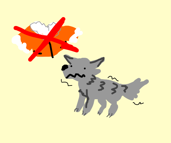 Wolf is cold without a jacket