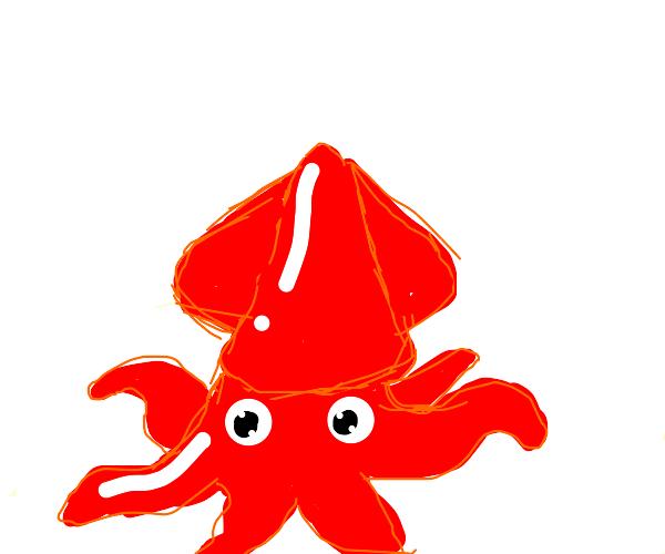 a cute squid