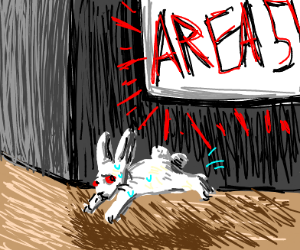 rabbit free from area 51