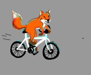 Fox rides a bicycle