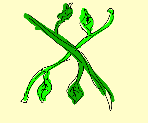 Two vines intersecting