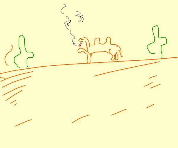 A Camel Smoking In The Desert