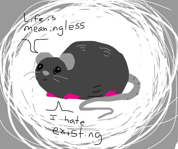Depressed rat