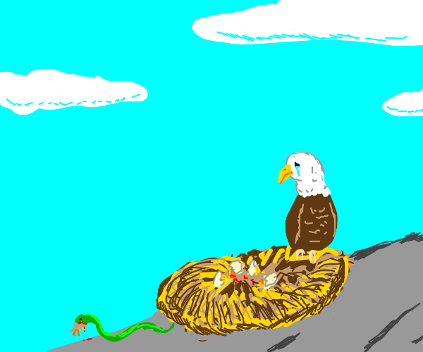 Sad bald eagle