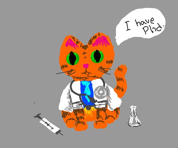 doctor cat, phd
