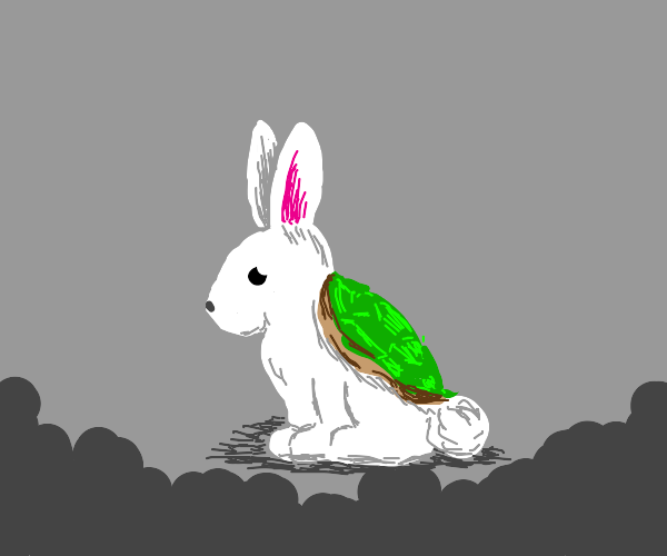 a rabbit with a turtle shell