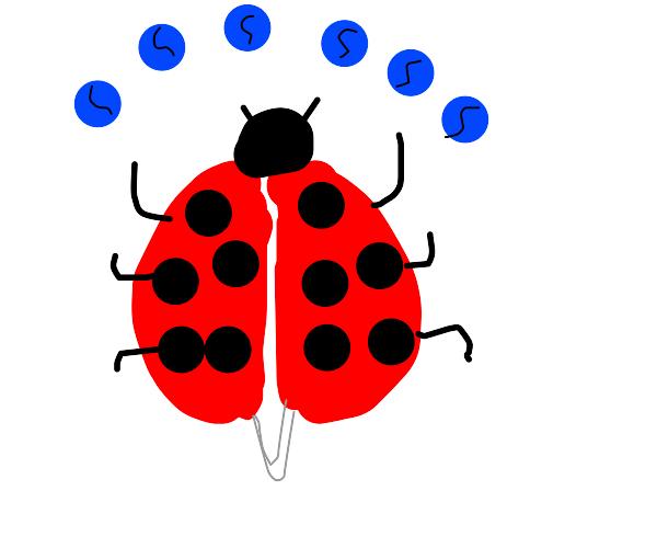 Ladybug with 6 balls
