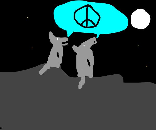 "wolves howl ""peace"""