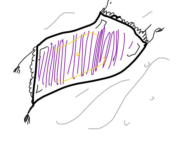 Flying magic carpet