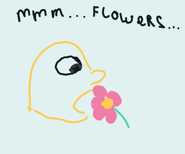 bald yellow guy is eating flowers