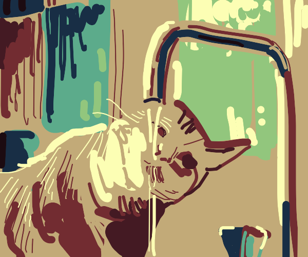 Cat Sipping from a Faucet