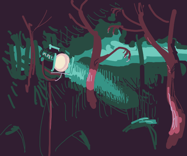 Spotlight in a spooky forest