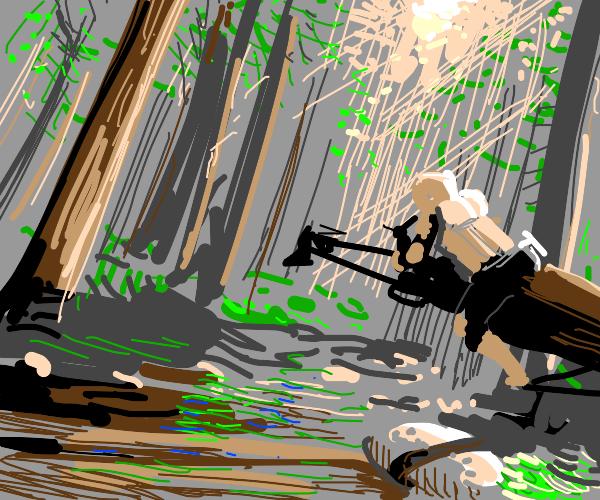 Forest of Endor