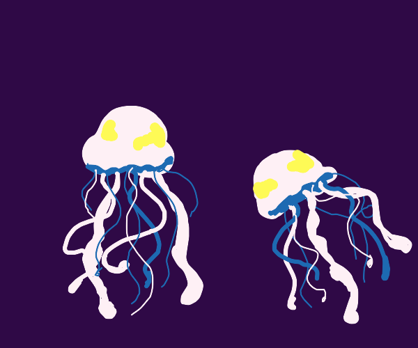 Two jellyfish at a depth in the ocean