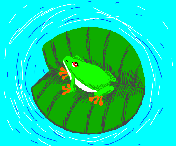Frog in Lily pad