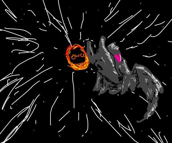 Wolf nuzzles blackhole with OwO face