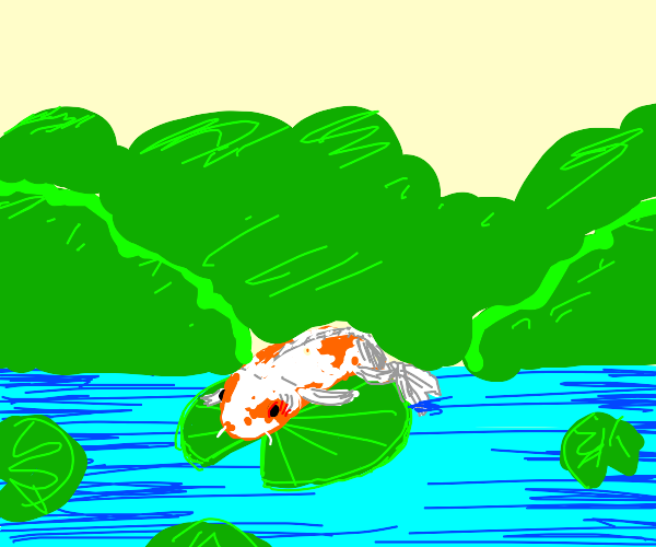 Fat koi on lily pad