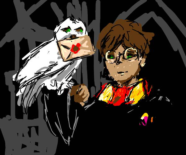 Harry Potter receives letter from an owl