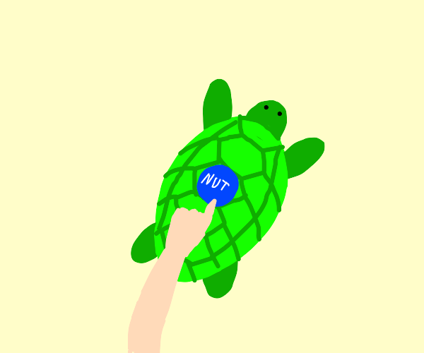 About to press the nut button on a turtle