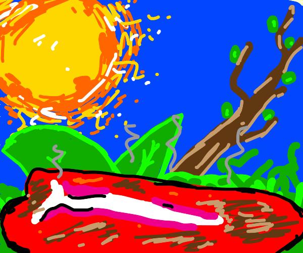 Steak sunbathing