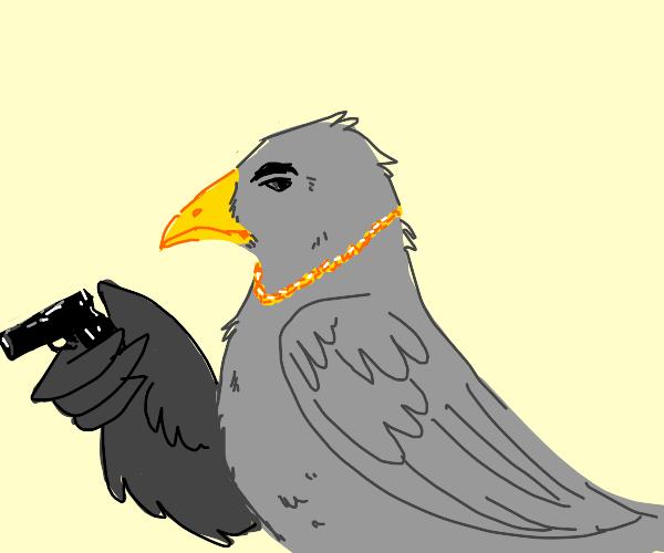 Gray bird with gold chain has a gun