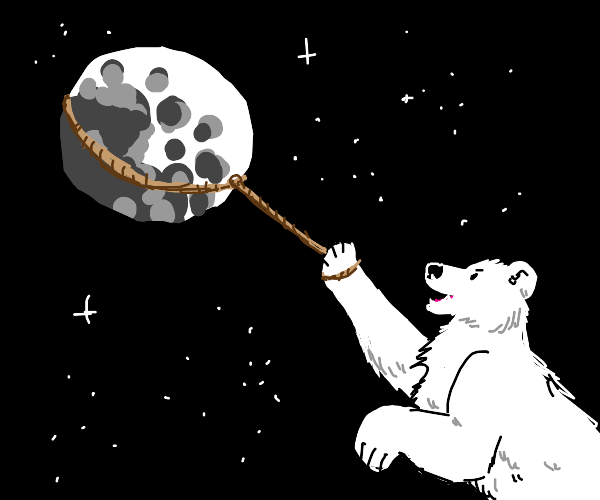 Polar bear lassos the moon