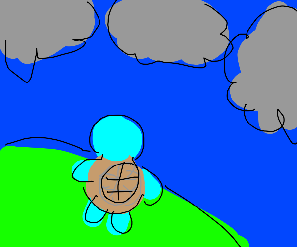 Squirtle Looks Off In The Distance