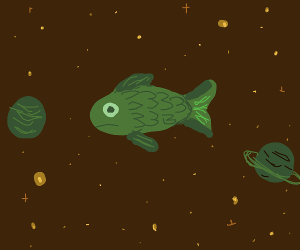 A fish in space