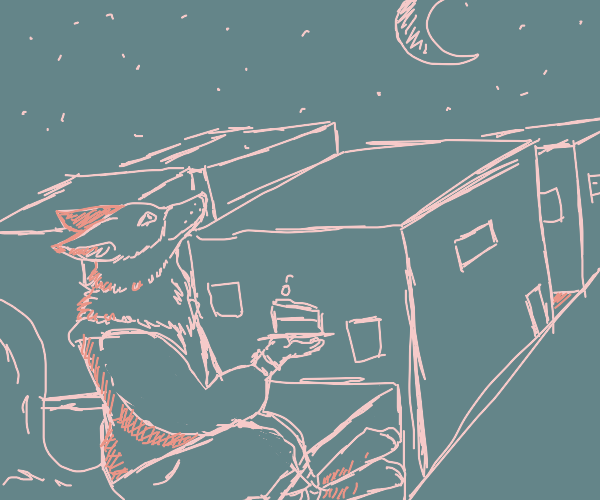 Fox folk in starry night sky holding cake