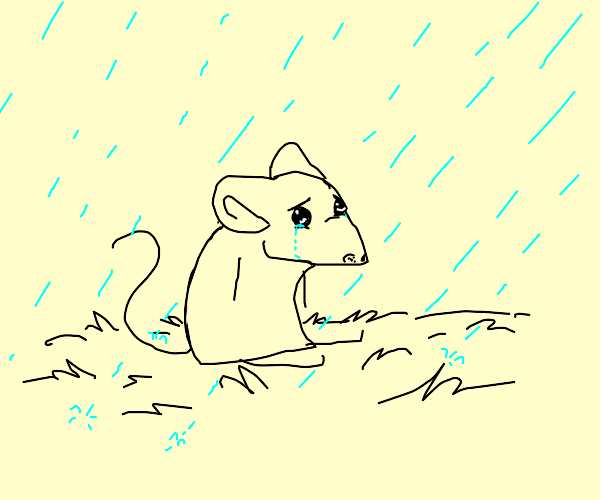 Crying mouse in the rain