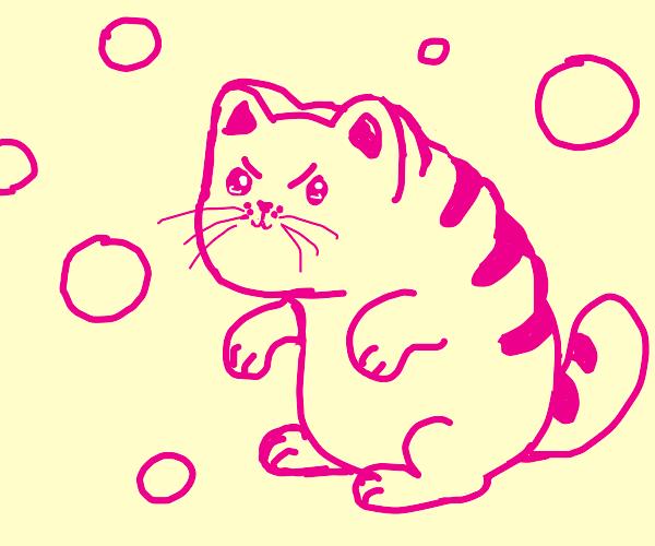 bread + cat + pink sphere creature