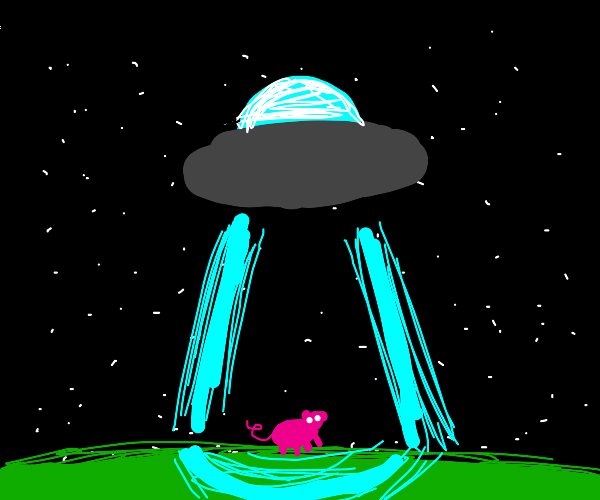 pig gets abducted by aliens