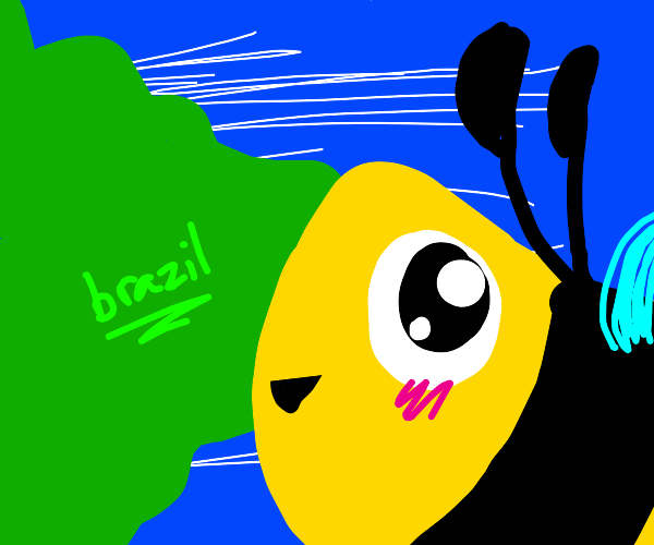 Bee is going to brazil