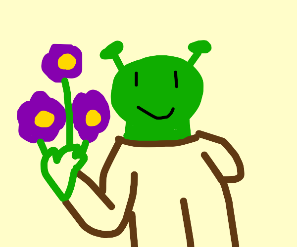 shrek child with a hoodie holding flowers