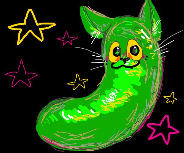pickle cat