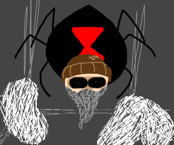 Hobo trapped by spiders