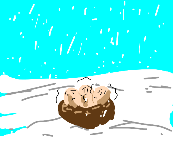 Shivering Eggs