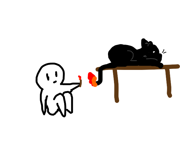 guy lighting a cats tail on fire