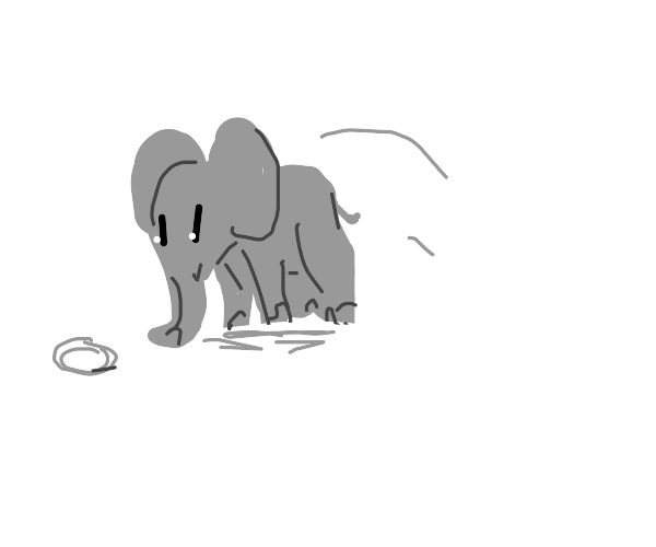 And the elephant steps up to the plate...