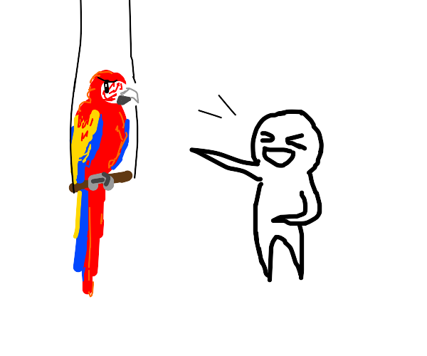 Man makes fun of parrot