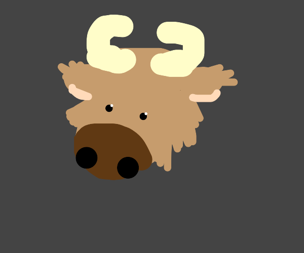 Cute Buffalo :)