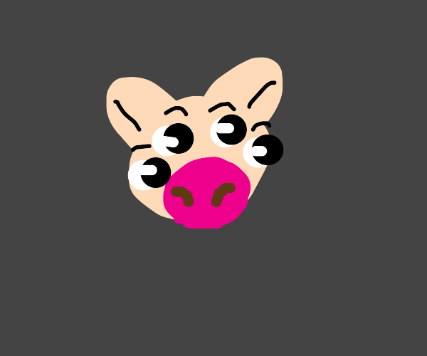 pig with 4 eyes!1!1!1!1