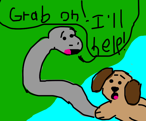 Snake rescuing dog from the water