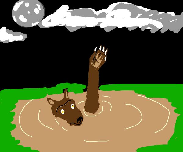 Werewolf sinking into Quicksand