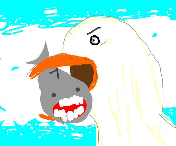 Giant seagull eats a shark