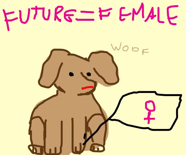 Feminist Puppy
